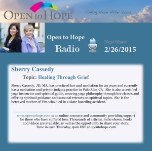 Sherry talks with Drs. Gloria and Heidi Horsley about Signs and Synchronicities on the Grief Journey.  Airs February 26, 2015.